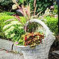 Beautiful Flowers In Basket by Laura Duhaime