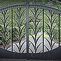 Beautiful Gate by Beth Vincent