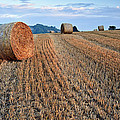 Beautiful Golden Hour Hay Bales Sunset Landscape by Matthew Gibson