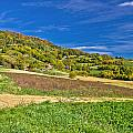 Beautiful Green Hill With Vineyard Cottages by Brch Photography