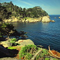 Beautiful Monterey Bay From Point Lobos by Joyce Dickens