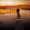 Beautiful Morning by Debra and Dave Vanderlaan