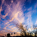 Beautiful Morning Sunrise Clouds Across The Sky by Michael Moriarty
