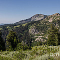 Beautiful Mountains by Robert Bales