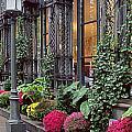 Beautiful Outside Cozy Inside by Muriel Levison Goodwin