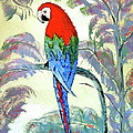 Beautiful Parrot For Someone Special by Phyllis Kaltenbach