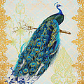 Beautiful Peacock-a by Jean Plout