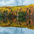 Beautiful Reflections Of A Autumn Forest In A Lake by U Schade