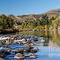 Beautiful River by Robert Bales