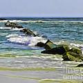 Beautiful Sea by Sami Martin