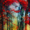 Beautiful Secrets by Joe Misrasi