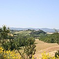 Beautiful Spot - Crete Senesi by Christiane Schulze Art And Photography