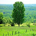 Beautiful Pennsylvania Summer Scene - Colorful Landscape - Painting Like by James Scott Preston