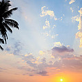 Beautiful Tropical Sunset by Nila Newsom