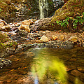 Beautiful View Of Upper Falls Located In Uvas Canyon County Park Forest Reflection by Jamie Pham