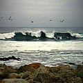 Beautiful Waves On The Monterey Peninsula by Joyce Dickens