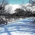Beautiful Winter View by Karen Majkrzak