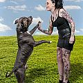 Beautiful Woman And Pit Bull by Rob Byron