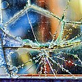 Beautifully Broken Framed by Sylvia Thornton