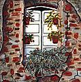 Beauty After Destruction Window Art Prints by Valerie Garner