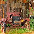 Beauty In Old Age by John Malone