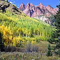Beauty In The Mountains by Pam Garcia