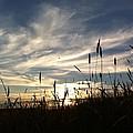 Beauty In The Sky by Jennifer Westlake
