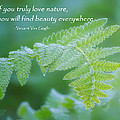 Beauty Is Everywhere by Bill Wakeley