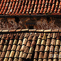 Beauty Of Dubrovnik 3 by Bob Christopher