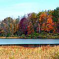 Beauty Of Fall by Aimee L Maher ALM GALLERY