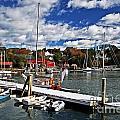 Beauty Of The Harbor by Elvis Vaughn