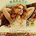 Beauty Vintage Cigar Advertisement  by Movie Poster Prints