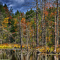 Beaver Pond Reflections Along The Highland Scenic Highway by Thomas R Fletcher