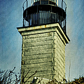 Beavertail Lighthouse  by Joan Carroll