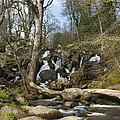 Becky Falls Dartmoor by Donald Davis