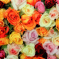Bed Of Roses by Tony Grider