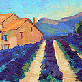 Bedoin - Provence Lavender by Diane McClary