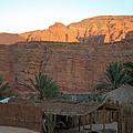 Beduin Camp In The Sinai Desert Egypt by Colette V Hera  Guggenheim