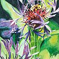 Bee Balm by Catherine Hess