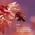 Bee Haiku by Jeff Swan