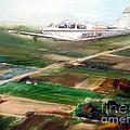 Beechcraft Bonanza by William III
