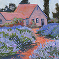 Beekman Lavender Field by Rhett Regina Owings