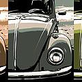 Beetles by Gordon Dean II
