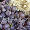 Beets And Mini Onions At The Market by Michelle Calkins