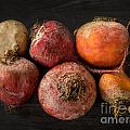 Beets In Different Colors On A Dark Background by Frank Bach