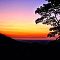 Zambia - Just Before Sunrise  by Martin Michael Pflaum