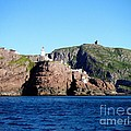 Behind Fort Amherst Rock 2 By Barbara Griffin by Barbara Griffin