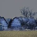 Behind The Barn by Bonfire Photography
