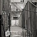 Behind The Gates by Wendy Gertz