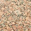 Beige Granite  by Jim Pruitt